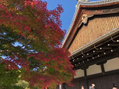 2020秋 京都