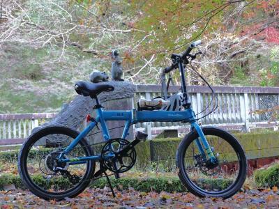 自転車でGO! 2020.11.21 須津川の紅葉=前編・自宅~大棚の滝駐車場=