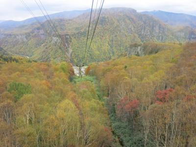 秋色探しの1泊2日バスツアー⑤《層雲峡温泉朝陽亭で昼食&層雲峡ロープウェイ》