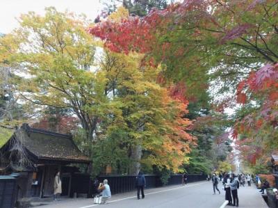 GoToトラベル5回目 秋彩みちのく11景癒しの休日(3日目/3日)
