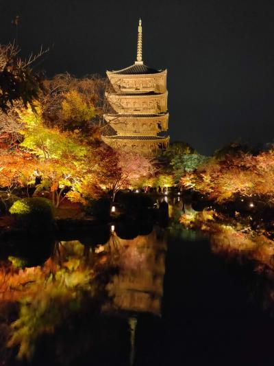 GoToトラベル第二弾 紅葉の京都2020 2日目