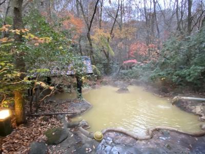 2020年11月 大分の秘湯 筌の口温泉1泊2日 鄙びた温泉宿「新清館」