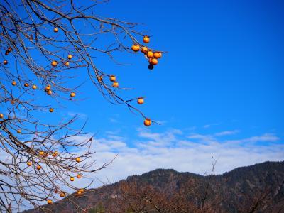 秋の終わりに奥飛騨温泉へGoTo