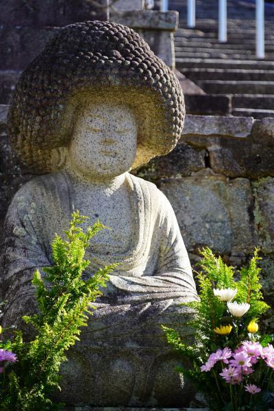 20201124-1 京都 金戒光明寺のお庭の紅葉を観に行きましたが…ちっとばかりタイミングを逃したかも