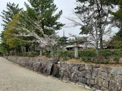 2020年春の18切符の旅。岐阜・奈良