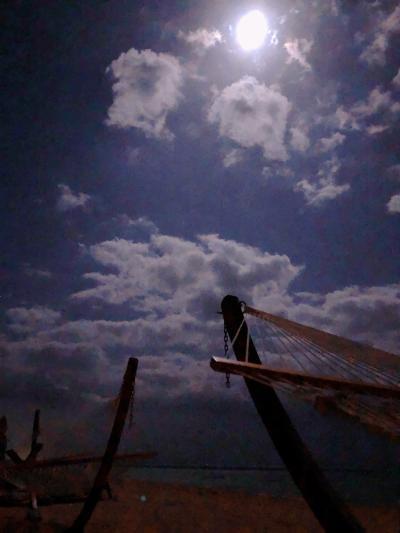 石垣島旅行1日目 小浜島