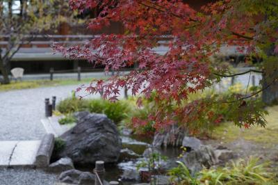 20201125-1 京都 城南宮に行ってみましょう。紅葉観られるかしら?