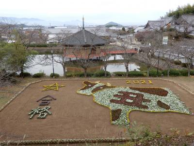 奈良の桜井へ お目当ては来年の干支「丑」の花絵 ☆ 龍の隠れ里「天空のクリスティカフェ」