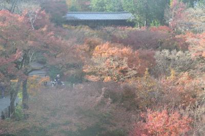 今年の京都の紅葉(その1)東福寺・南禅寺・永観堂・高台寺・清水寺
