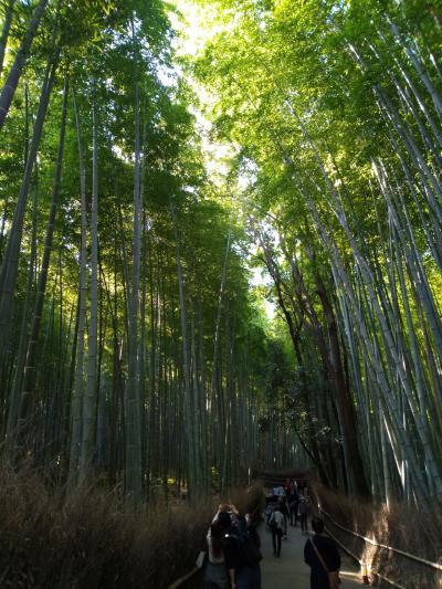 紅葉を満喫!秋の京都旅②
