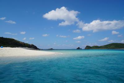青のグラデーションか綺麗すぎる慶良間諸島trip