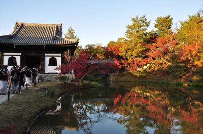 秋の京都2020(1)~高台寺界隈~