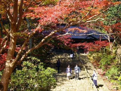 紅葉の室生寺を訪ねて