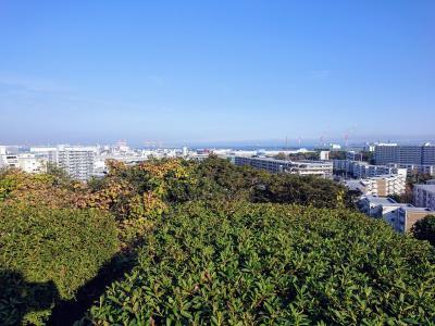 富岡中央公園と横浜南部市場