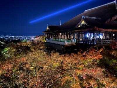 清水寺秋夜・ライトアップ2020