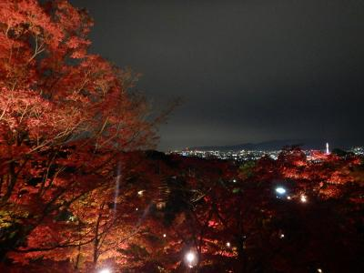 それでも京都に行こう!②南禅寺・永観堂・竜安寺そして清水寺ライトアップに京都タワー