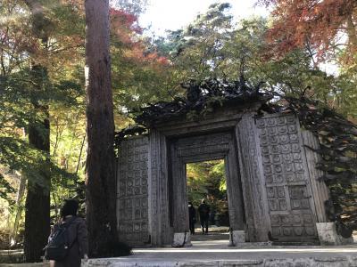 河口湖の旅②(久保田一竹美術館・大池公園・河口湖大橋)