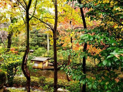 秋の東京 女ひとり旅で美術館めぐり一泊二日