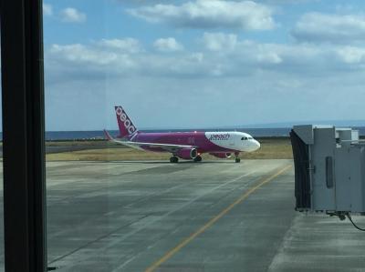 Flight MM542