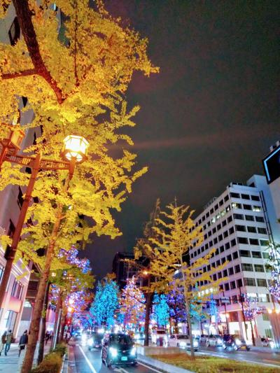 晩秋の関西路 霜月 2020