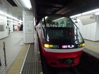 久しぶりの用事のついで・名古屋へ【その1】ナゴヤドームと瀬戸線と名鉄パノラマスーパー