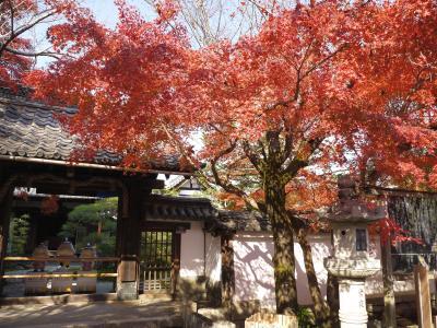 恐る恐るの京都旅行 2日目は喧噪な京都市内観光を避け、大津の西国三十三ヵ所霊場を回ります