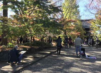午後からちょっと紅葉を、九品仏から等々力渓谷、二子玉川界隈編