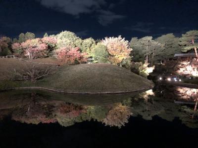2020 晩秋の京都 子連れ旅 1・2日目