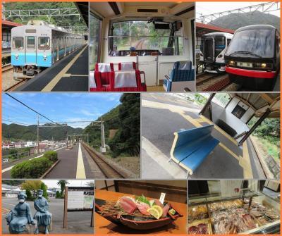 伊豆下田のんびり温泉(4)伊豆急電車で行ったり来たりして誰もいない駅で静かに過ごす贅沢な時間
