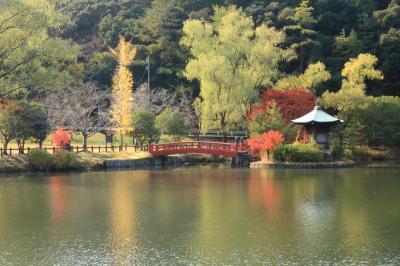 錦繍の紅葉を追いかけて♪ 定光寺、定光寺公園&豊田市美術館のお茶室の紅葉♪
