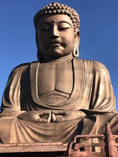 公園の中にある大仏を見てきました(奈良の大仏より大きいそうです)