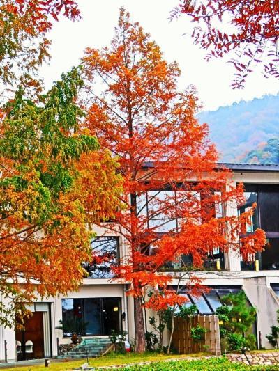 福井県-24 若狭c ホテル-水月花 うなぎせいろ飯+α-昼食 ☆小雨降る水月湖畔-散歩