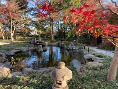 埼玉・平林寺の紅葉②~駅からの往復と野火止用水~