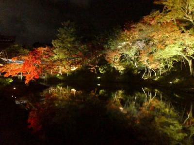 GOTOトラベル利用で京都2泊3日 ① 三千院&高台寺ライトアップ