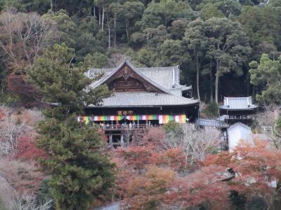 晩秋の奈良、名残の紅葉と奈良和食の休日 2020