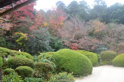 今年の京都の紅葉(その4)比叡山・詩仙堂・金福寺