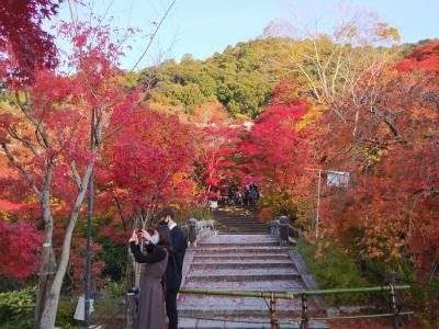 GoTot旅第4弾、汗ばむ陽気の京都で紅葉狩り おまけで大塚国際美術館。その2大原三千院と永観堂