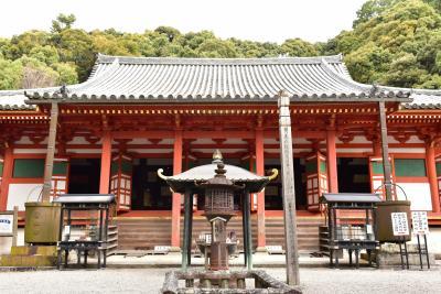 ソロツー:南朝の寺院に紅葉を訪ねる:金剛寺と観心寺