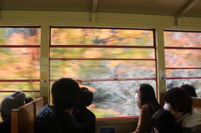 紅葉の京都へ「GOTO] ②嵯峨野トロッコ、保津峡、嵐山