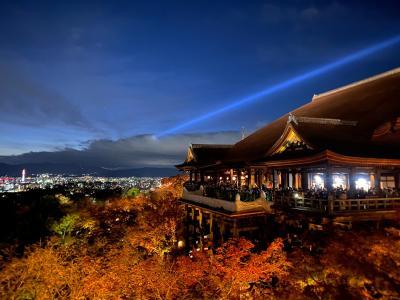 そうだ 京都、行こう。紅葉の名所へ ☆1・2日目☆ ~永観堂・圓徳院・清水寺~