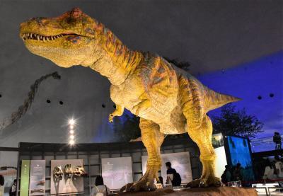 恐竜博物館と苔寺と呼ばれる白山平泉寺2020~大規模な恐竜骨格展示~(福井県勝山)