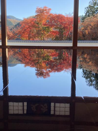 桐生の床紅葉から、藤岡の冬ざくらへ~この先一体何度~(^^♪