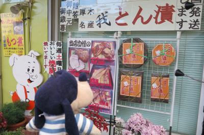 グーちゃん、七沢温泉へ行く!(近くで、GO TO!温泉三昧!編)