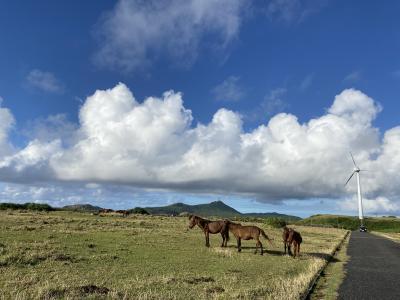 2020JAPAN島旅・11月与那国島サイクリング