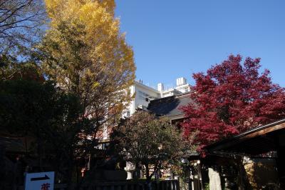 20201202-2 京都 菅原院天満宮神社の銀杏の木。と、ちょっとだけ京都御苑。