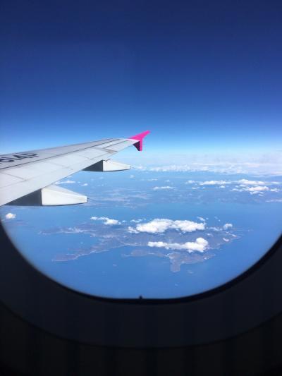 やはり来て良かった奄美大島その1