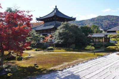 20201204-1 京都 鹿王院のお庭は、嵐山を借景に。と、なんだか見たことありそな姿の舎利殿。