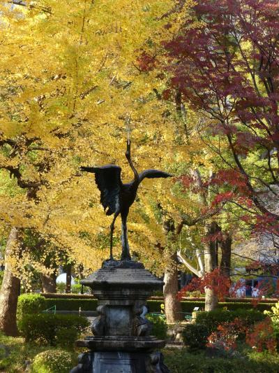 「日比谷公園」の紅葉_2020_紅葉色付き進行中、黄葉は落葉中でした(千代田区)