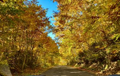 北東北紀行ー目標「紅葉の奥入瀬渓谷の散策」 1日目 花巻ー松川渓谷ー安比高原
