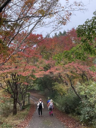 関東最後の紅葉ハイキング